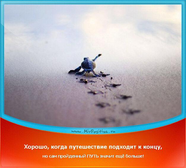 позитивчик дня: Хорошо, когда путешествие подходит к концу, но сам пройденный ПУТЬ значит ещё больше!
