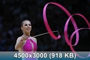 http://img-fotki.yandex.ru/get/9833/238566709.11/0_cfaef_c7fd75a4_orig.jpg