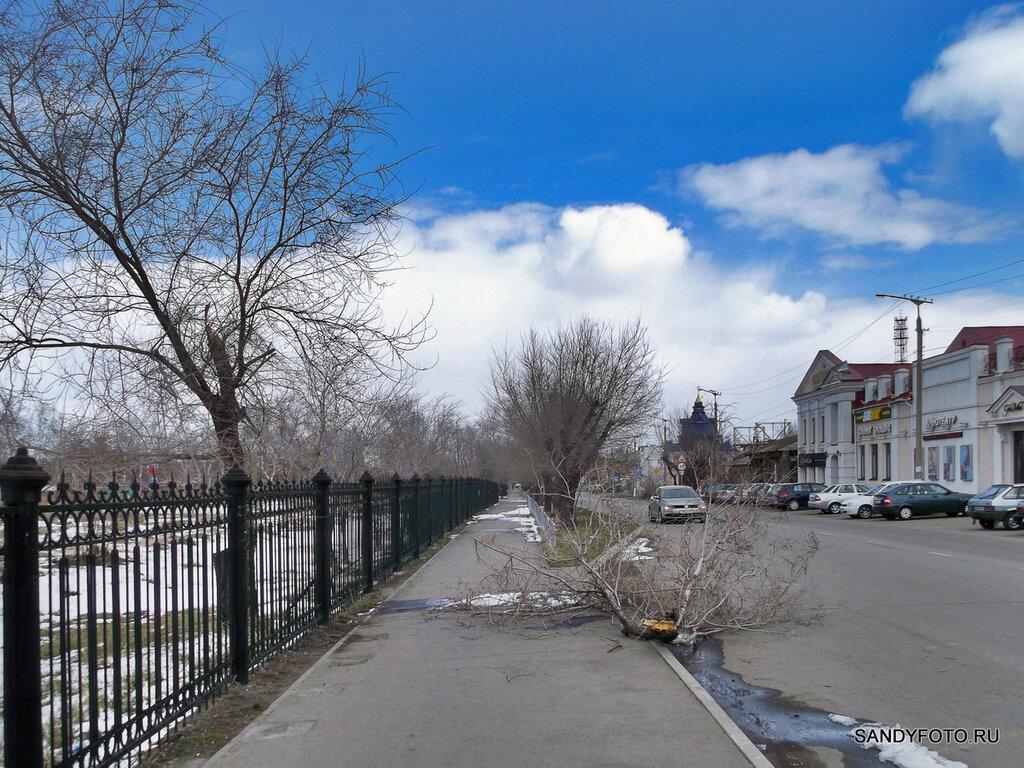 Сломаное дерево возле городского парка в Троицке