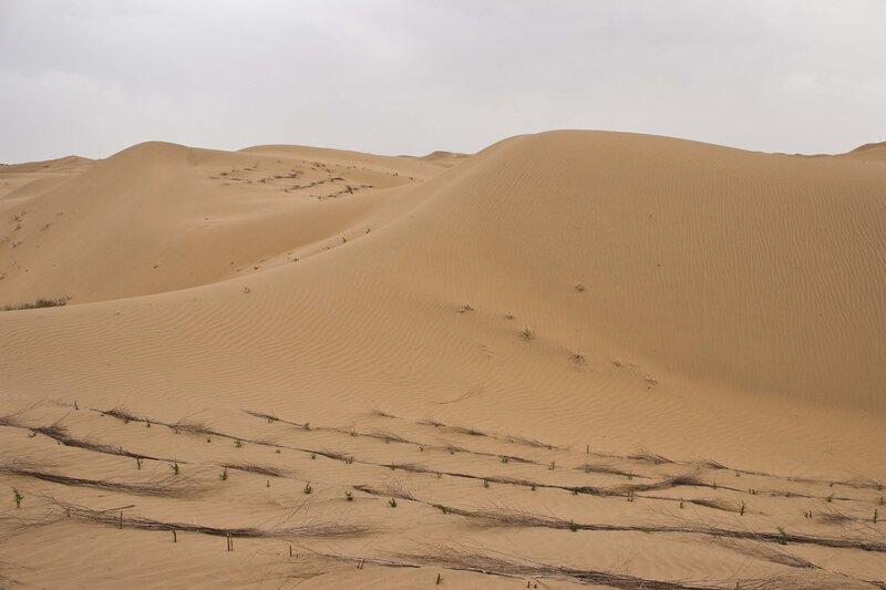 сети для закрепления песка в пустыне Кубучи (пески Кузупчи, Kubuqi desert)