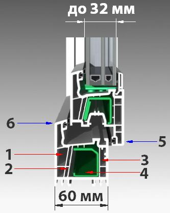 salamander_2d-design_4