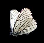 http://img-fotki.yandex.ru/get/9833/97761520.d1/0_7fc48_6e28d4ed_orig.png