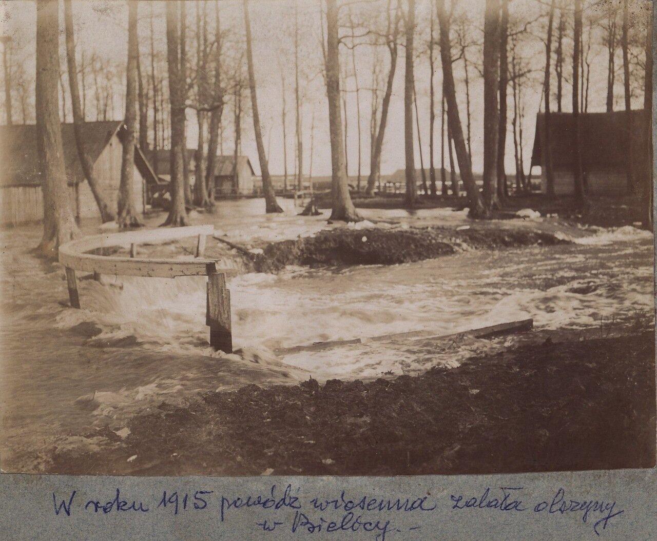 Белицы. 1915