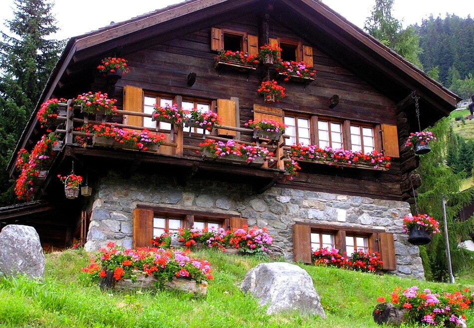 доступнее природу фото красивые швейцарские дома садовая