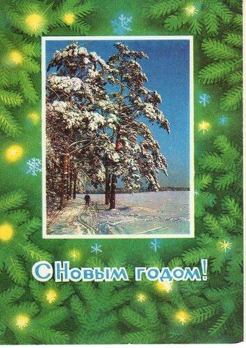Сосны в снегу. С Новым годом! открытка поздравление картинка