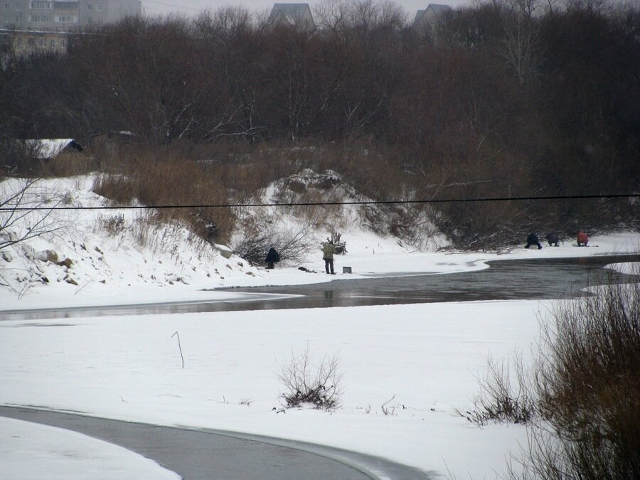 Ловля окуня онлайн на озере ( Рубцовск Егорьевка озеро