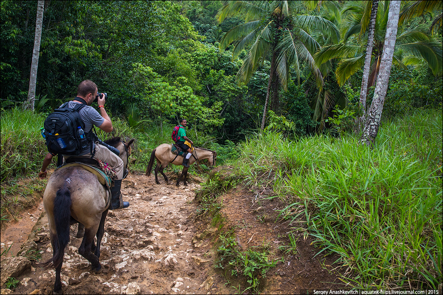 10 дней в Доминикане