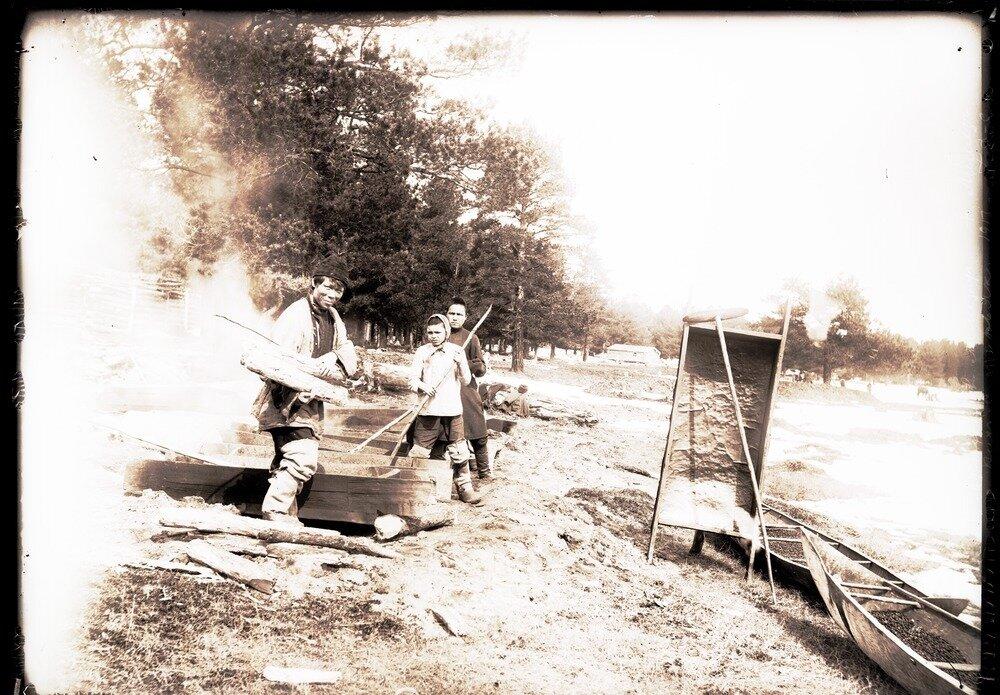 1913. Село Ларьяк. Сушение орехов