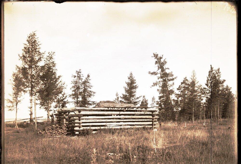 Скотный двор на Реденьком.