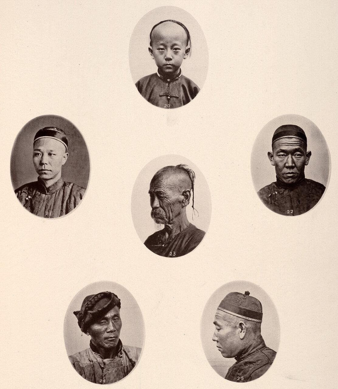 Китайские типы