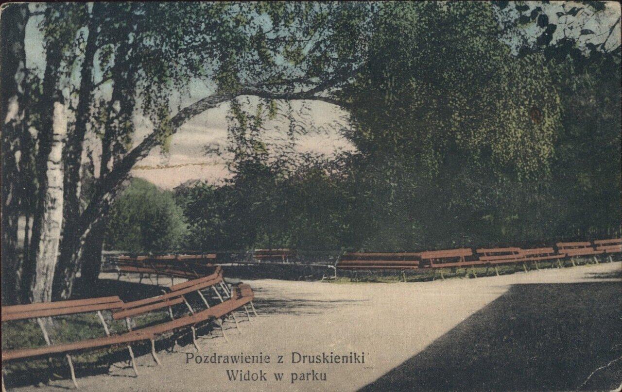 Вид в парке. 1913