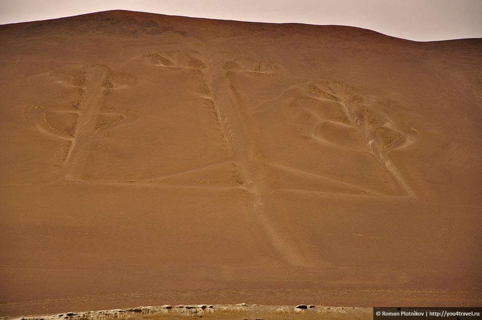 0 161755 a85a5c02 orig Национальный парк Паракас и острова Бальестас в Перу