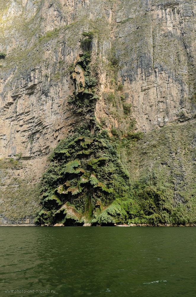 11. Водопад el Árbol de Navidad в каньоне Сумидеро в Мексике. Отзыв о самостоятельной экскурсии. Как добраться.
