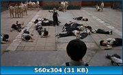 http//img-fotki.yandex.ru/get/9835/46965840.52/0_11c82c_f27dac5c_orig.jpg