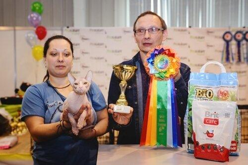 Best Kitten - 234 KUPIDON BOGEMA MIROV OF TERIOS TROLL (Male) DSX n 33 03 Зарубина Е. А. Котомир, Новосибирск