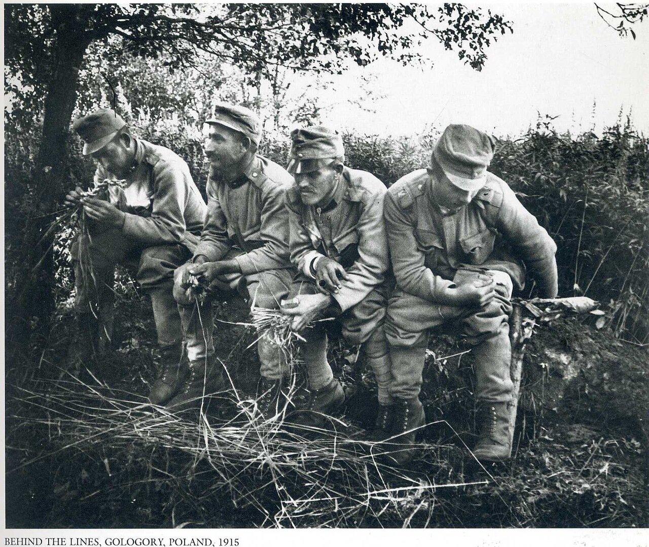 В тылу. Гологоры. 1915