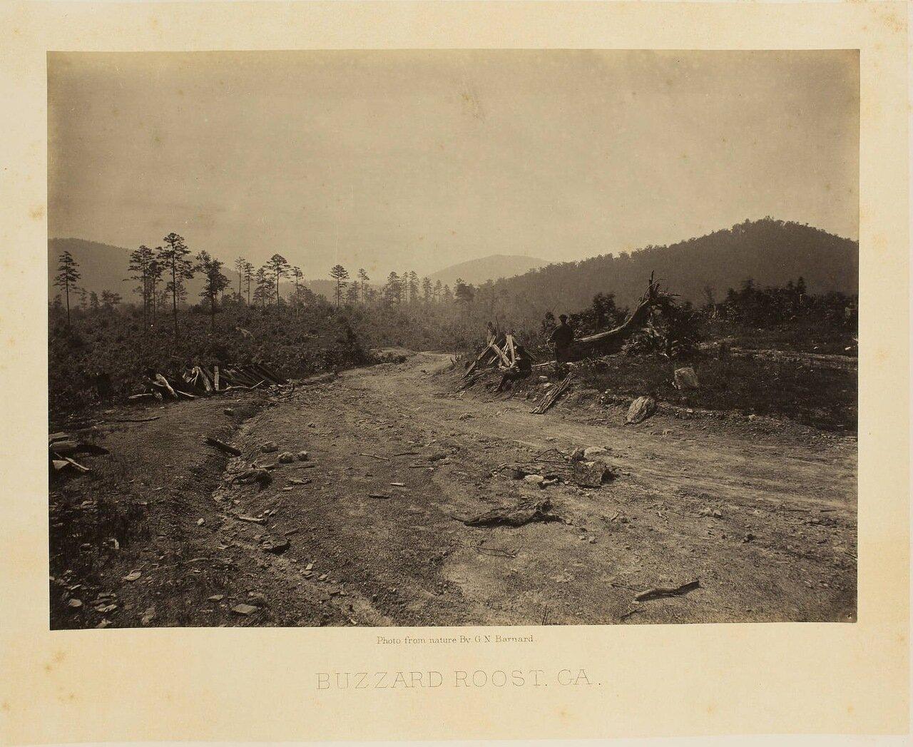 Баззард Руст, Джорджия
