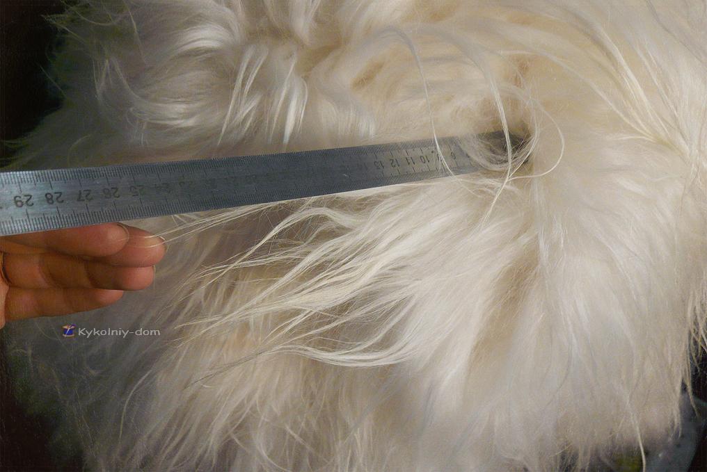шкура Кашмирской породы козы парики для кукол из шкур.волосы для кукол натуральные