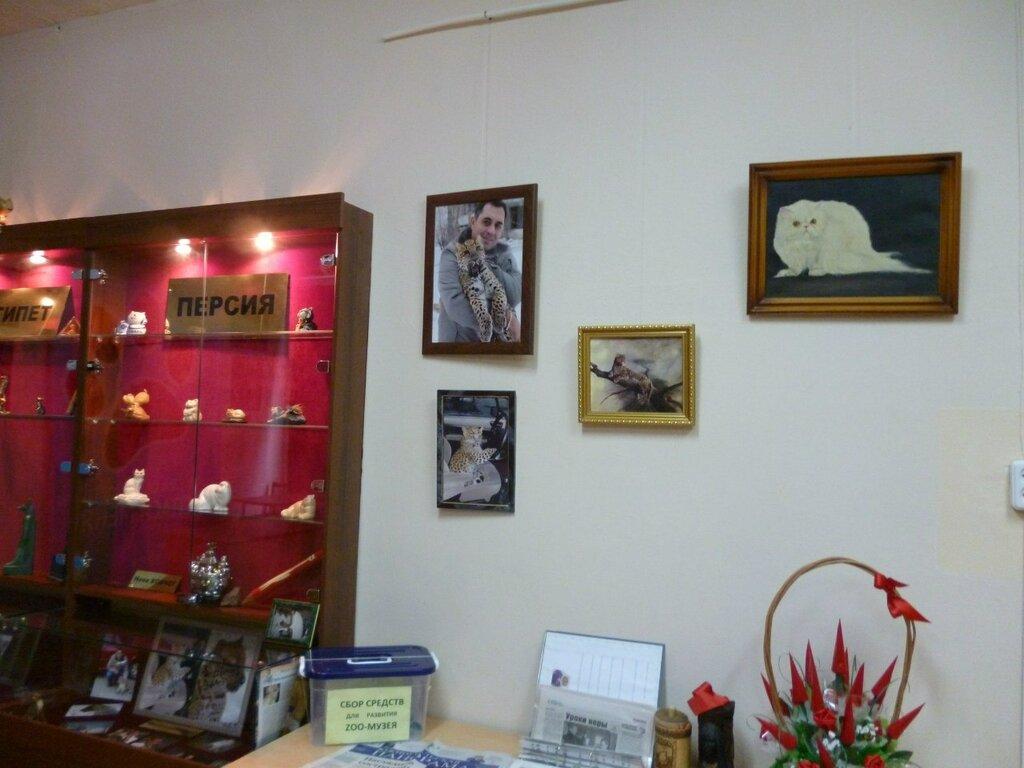 В музее есть тематические стенды по странам (16.01.2014)
