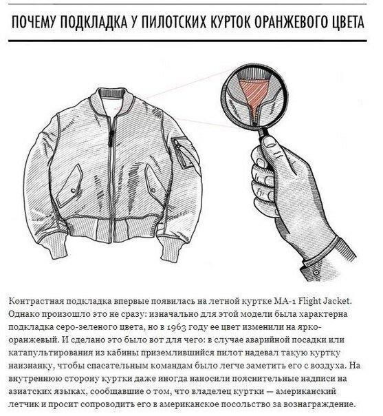 Интересные факты про одежду