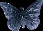 Bee Noel