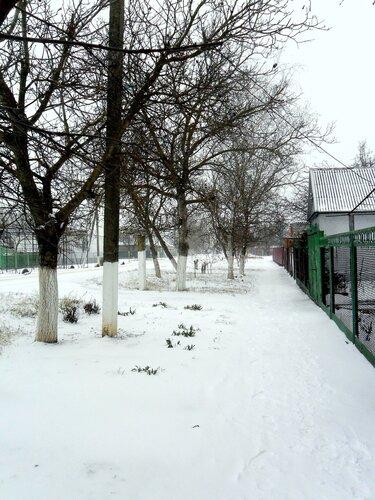 Контрасты января, капризы погоды