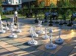 О шахматах, на полях черно-белых