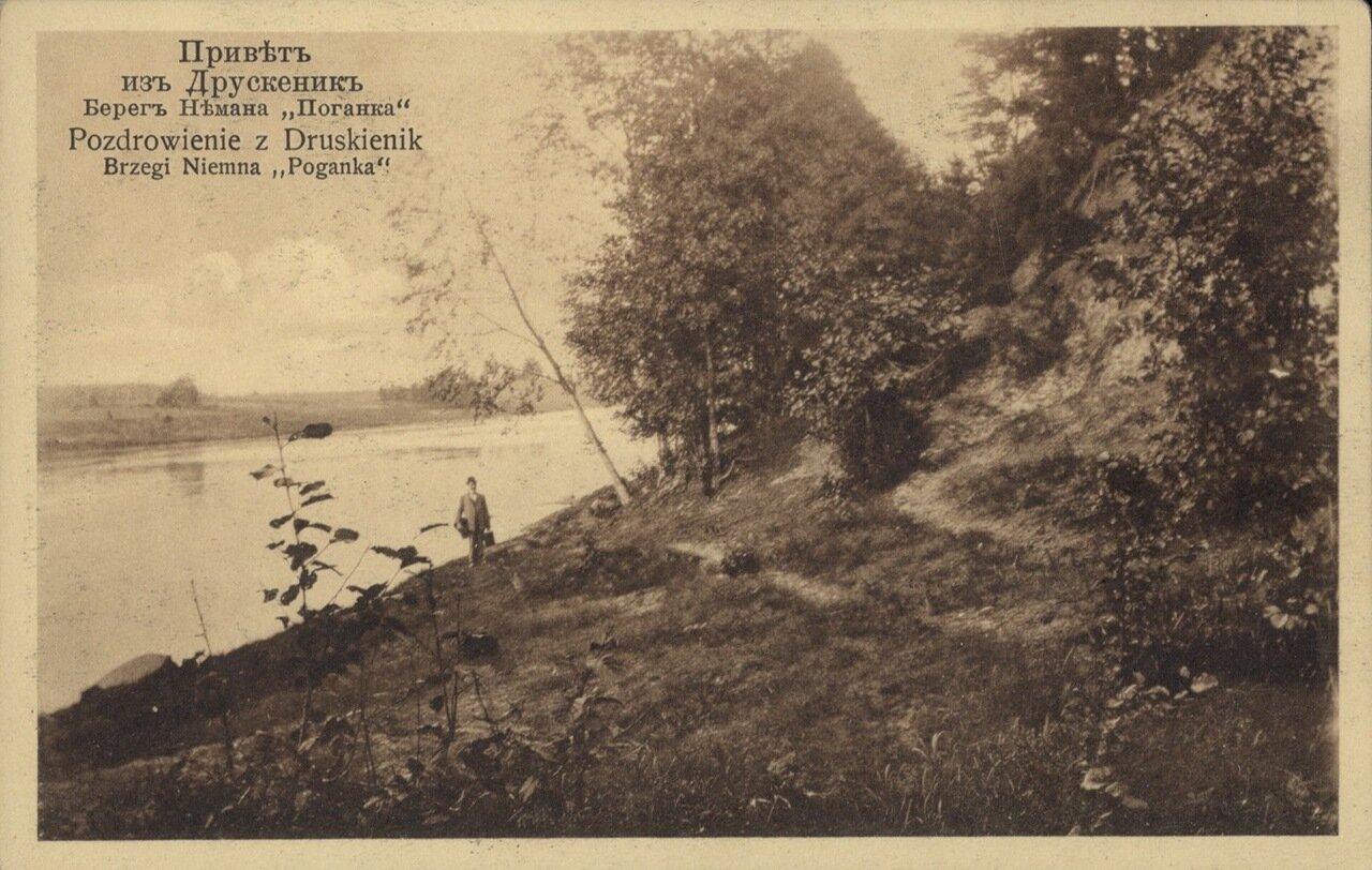 Берег Немана. «Поганка». 1910