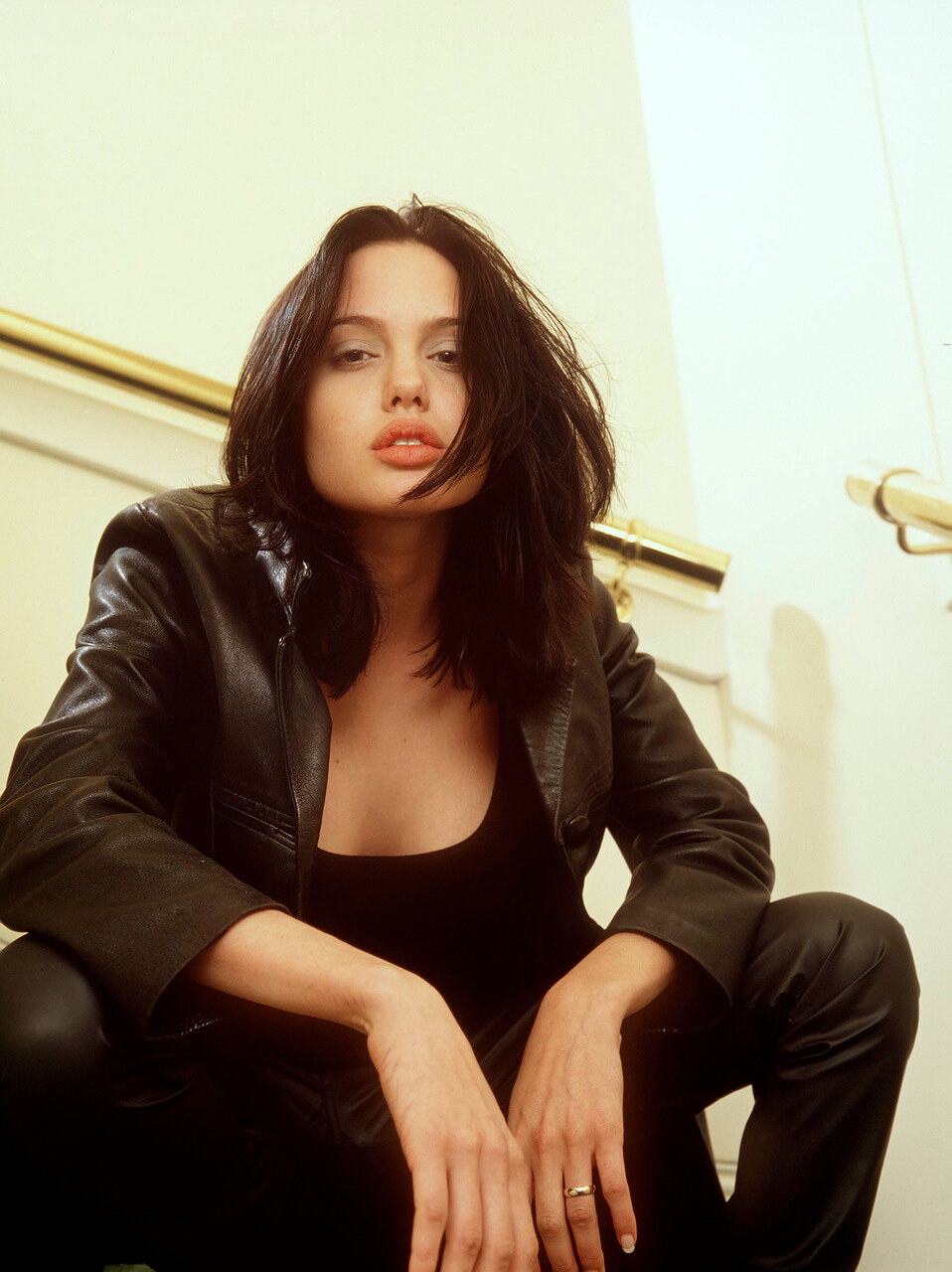 the special edition angelina jolie humus