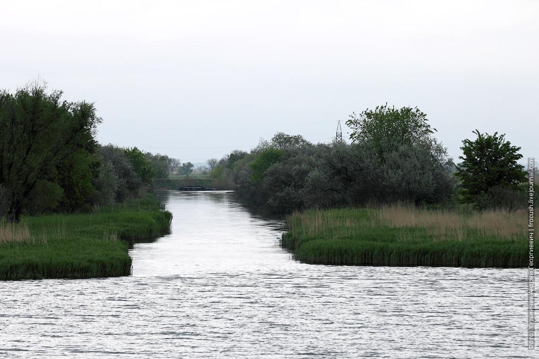Низовья Дона: покрытый травой низкий берег да постройки станичников