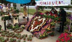 В Чимишлии прошёл грандиозный «Парад цветов»