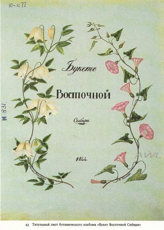 https://img-fotki.yandex.ru/get/9837/19735401.ed/0_8f0e3_f72f6741_XL.jpg