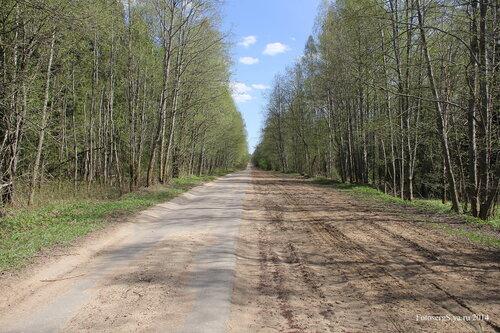 Бывшая дорога Елизаветинка-Охта-Термолово
