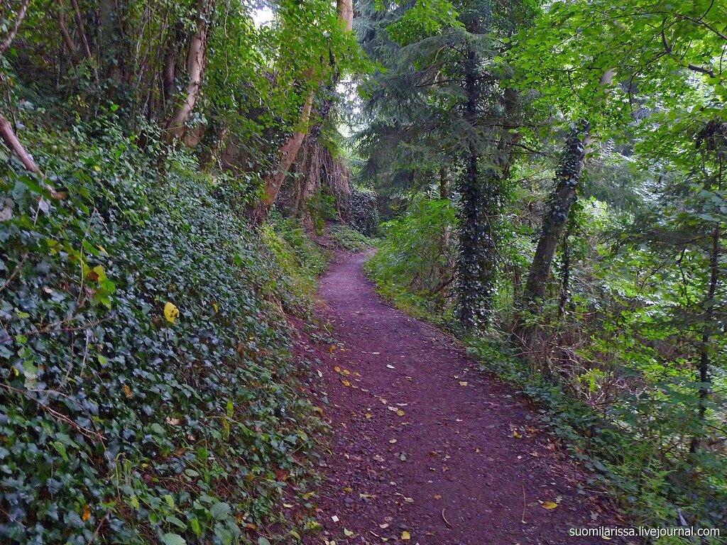 По лесной тропе вокруг замка.