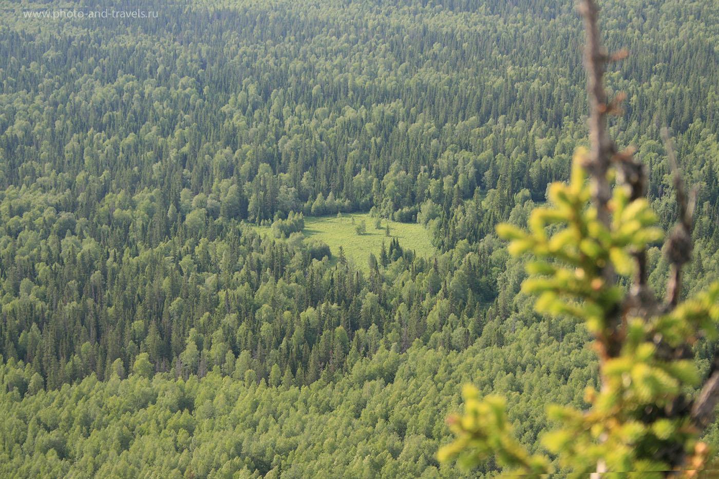 7. Зачем люди едут из Челябинска в горы национального парка Таганай? За запахом тайги...