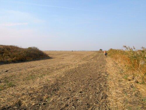 В походе, у поля и кургана ... DSCN1436.JPG