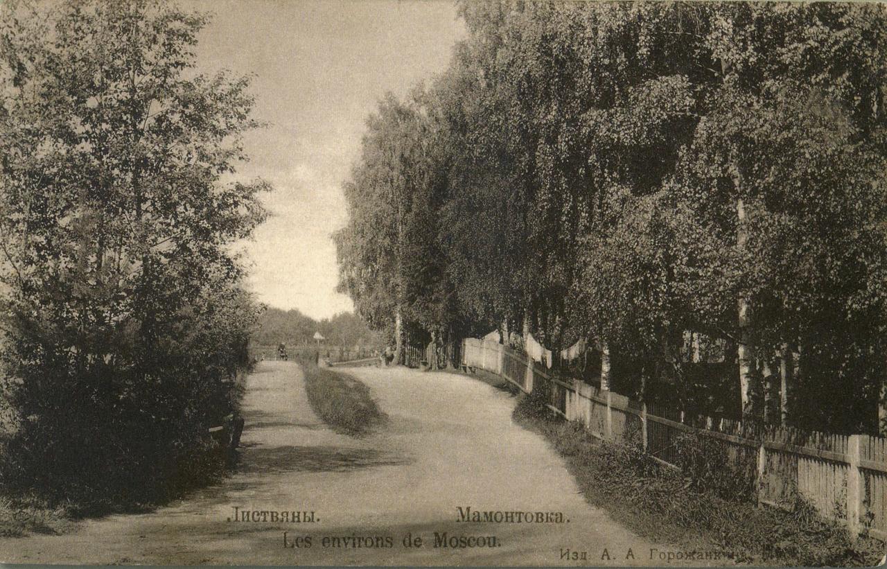 Окрестности Москвы. Листвяны. Мамонтовка