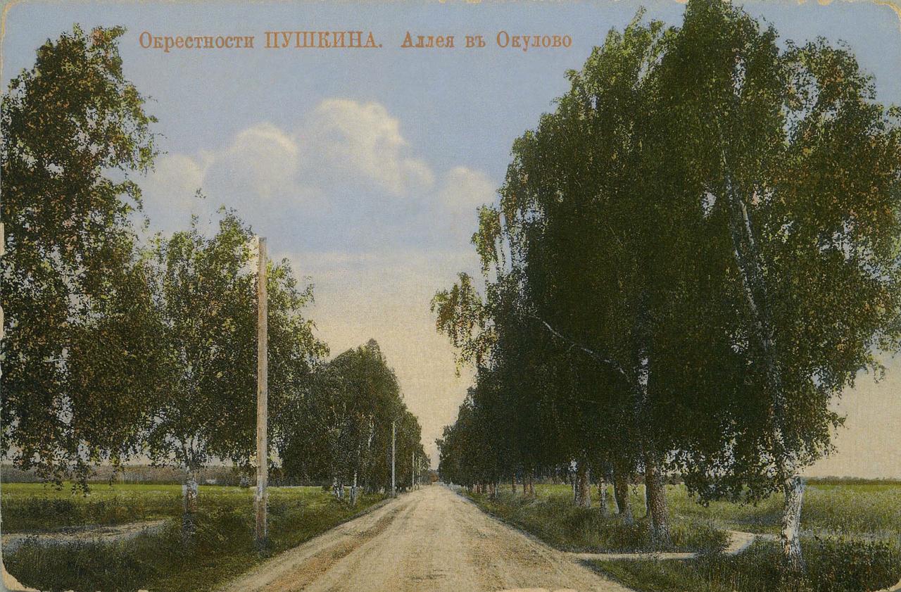 Окрестности Москвы. Акуловка. Аллея в Акулово