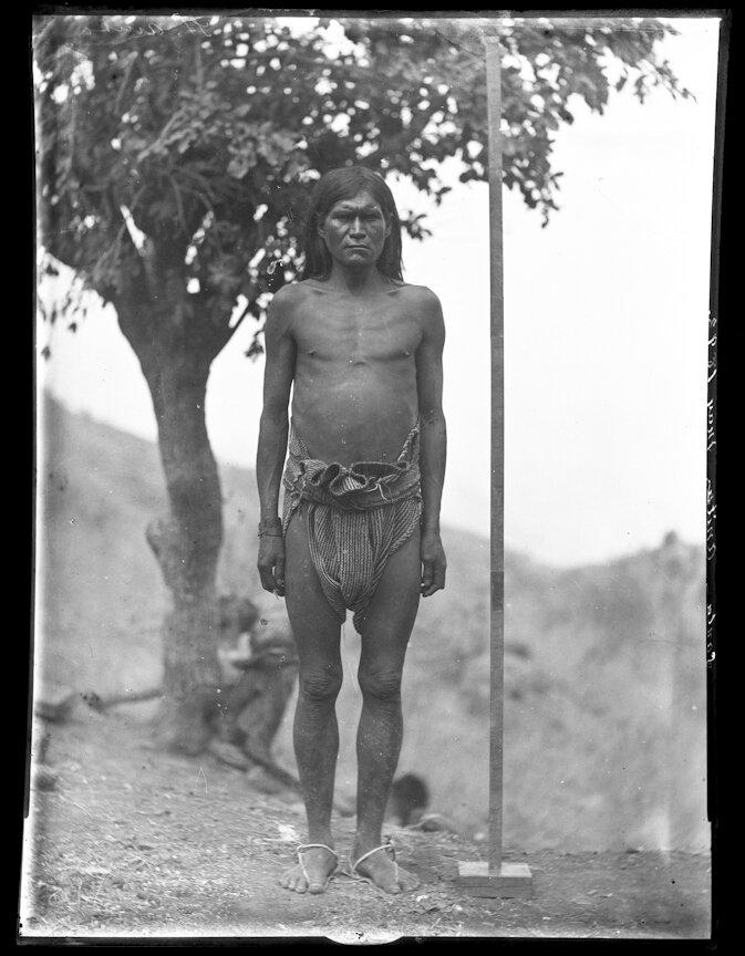 1893. Мужчина племени тараумара, Санта Анита, Чихуахуа