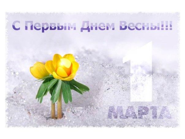 Картинка С первым днем весны! Желтые цветы