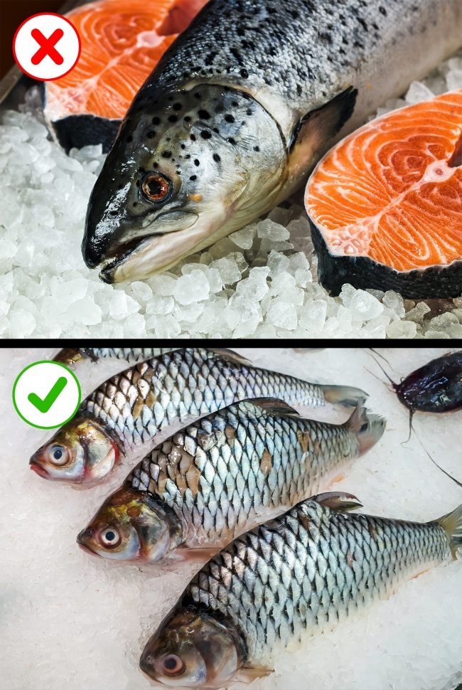 Какую замороженную рыбу нестоит есть: 8советов для выбора полезного продукта (8 фото)