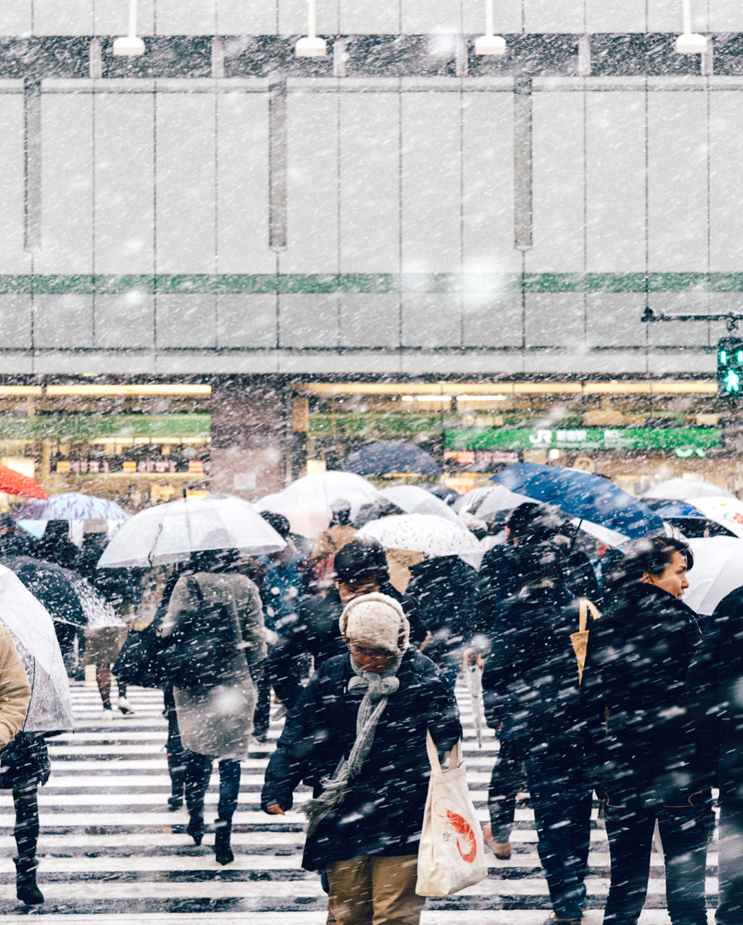 Magical Images of Tokyo Under the Snow