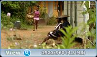 Гвиана (Гайана) (1 сезон: 1-8 серии из 8) / Guyane / 2017 / ПМ (Baibako) / HDRip + AVC + BDRip (720p) + (1080p)