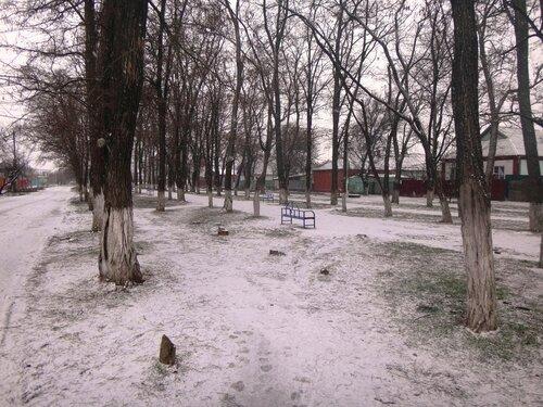 23 февраля 2018, 15:46:14, в парке, свежий снег ... DSC04222.JPG