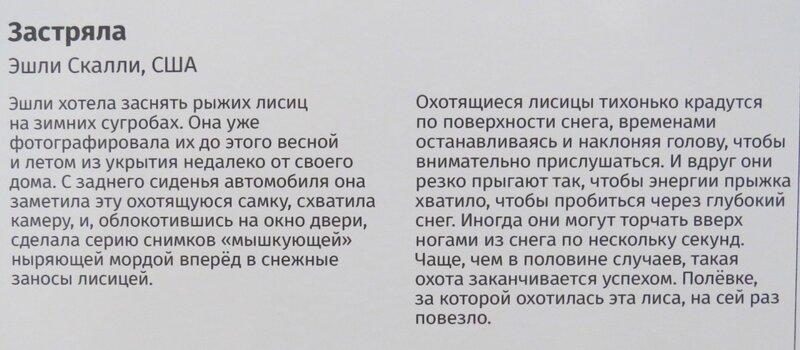 https://img-fotki.yandex.ru/get/985272/140132613.6d4/0_244855_561e7d77_XL.jpg