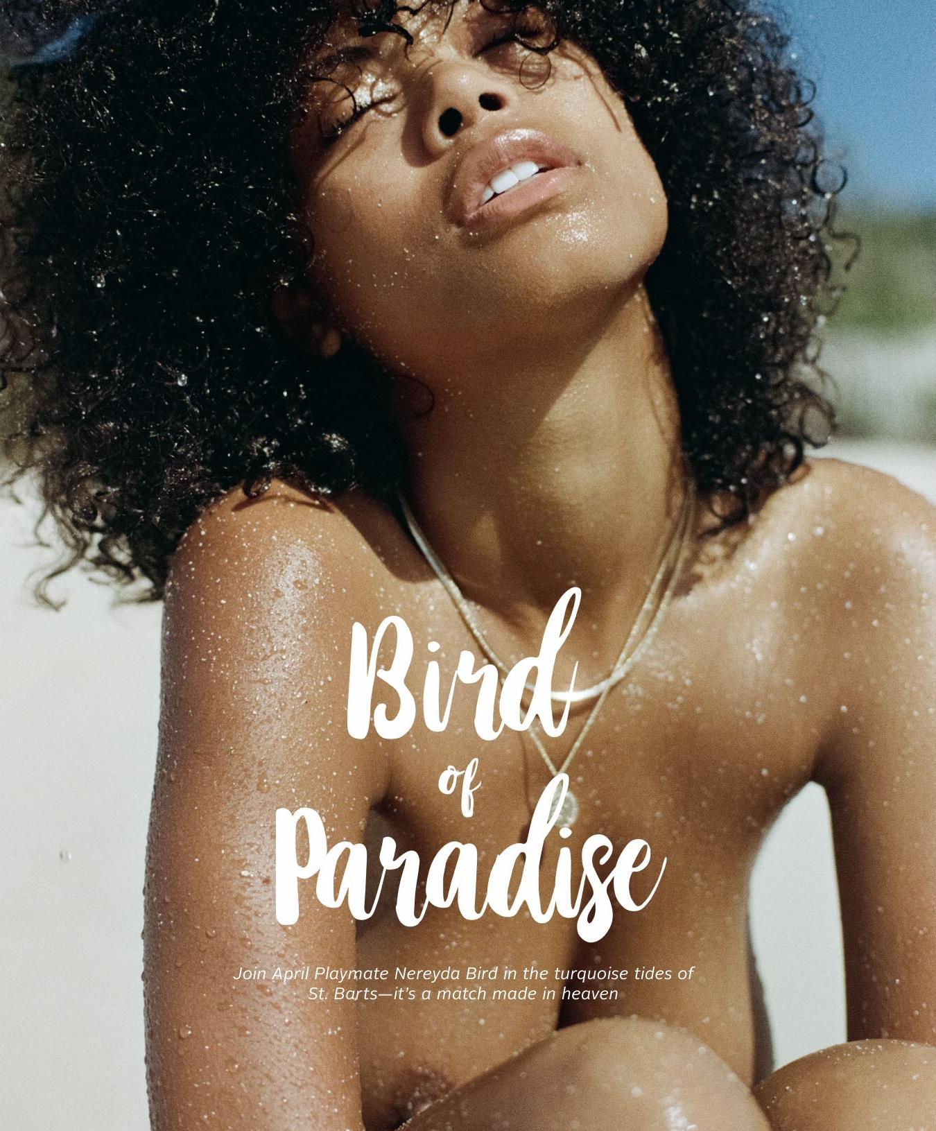 Nereyda Bird by Wilson Philippe & Vanessa Hollander for Playboy US March-April 2018