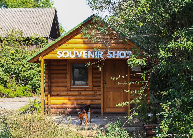 На территории соланы есть сувенирный магазин