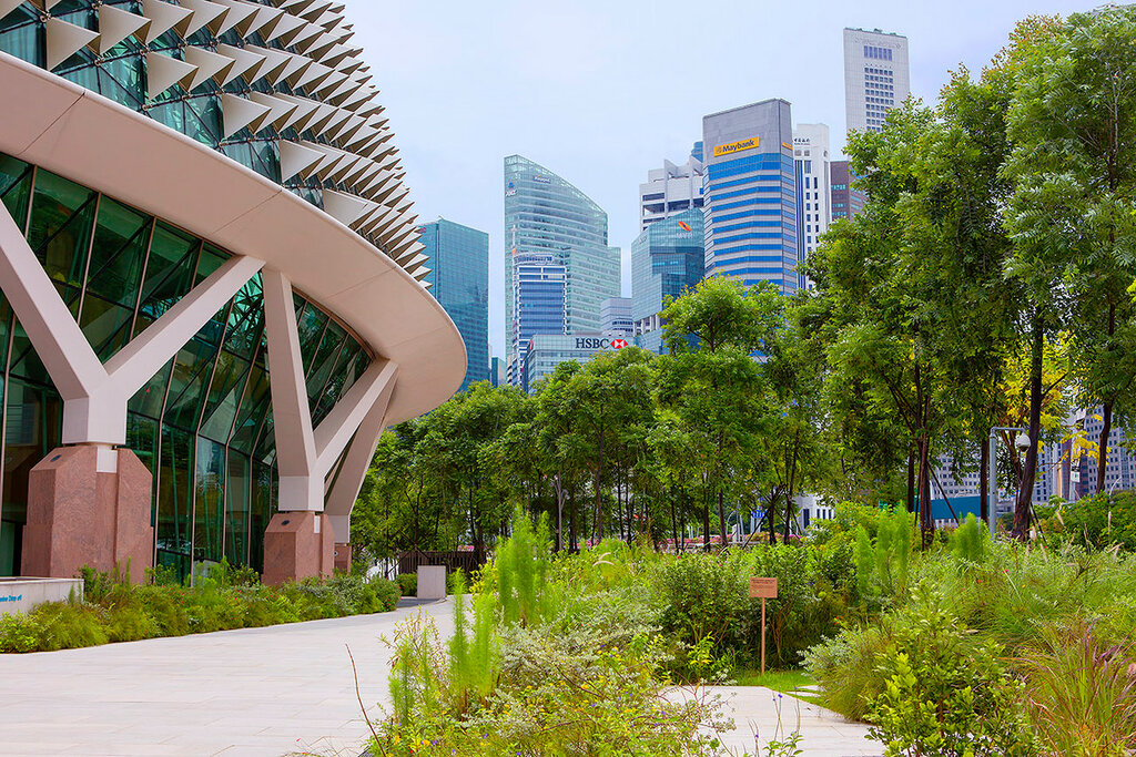 Сингапур. Эспланада парк.