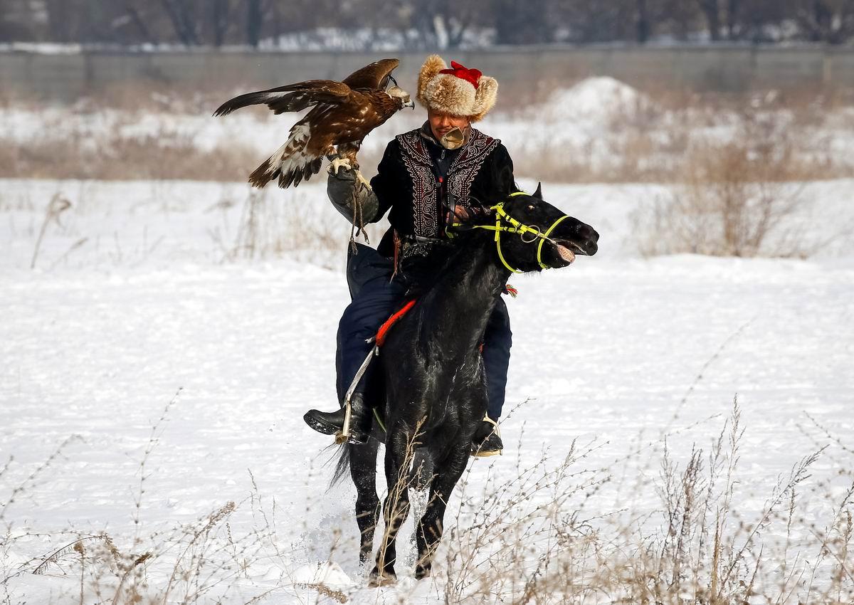 С грозной птицей на руке: Казахский охотник посреди зимних просторов