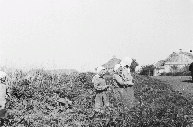 Три девушки в поле